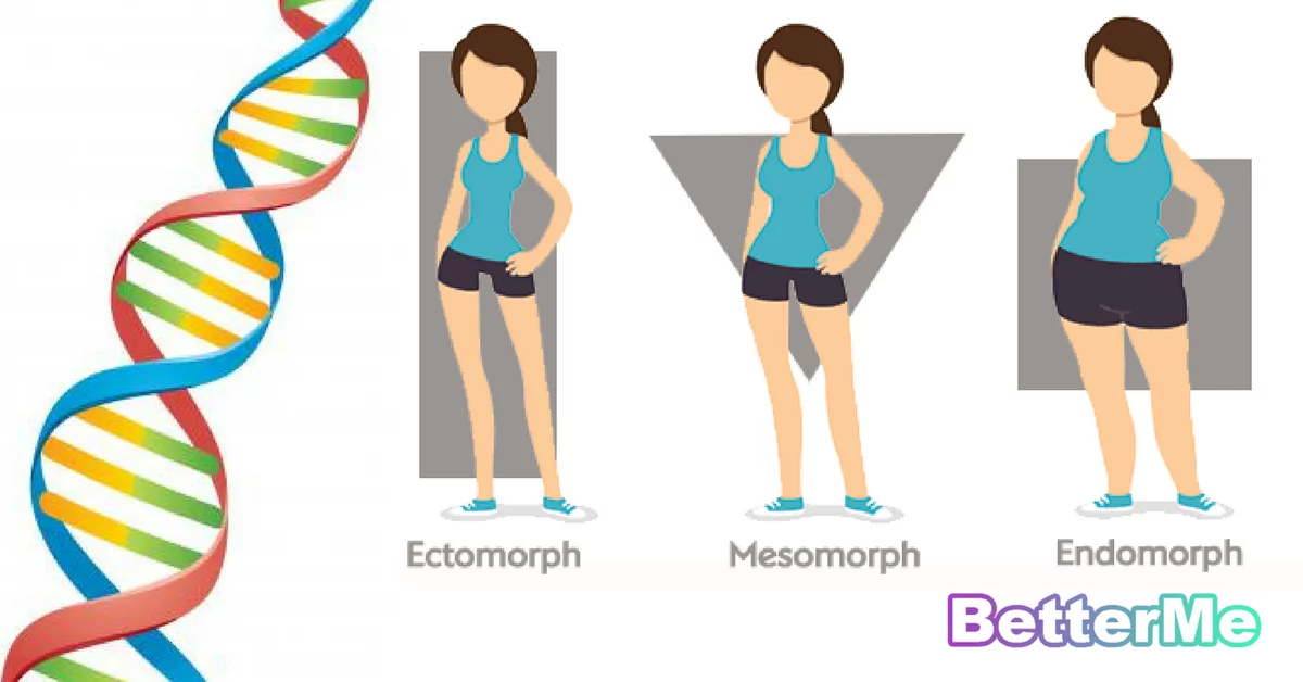 How To Lose Weight Based On Your Dna The Best Exercise And Eating Advice For Body Type