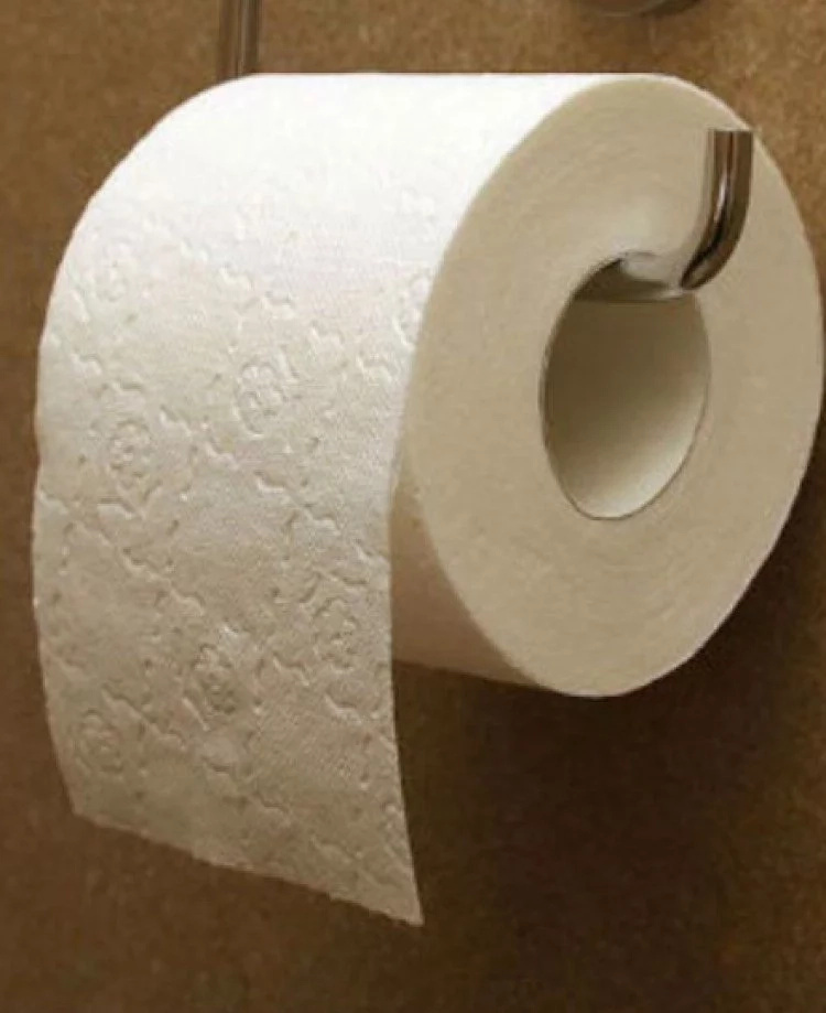 After reading this you will never cover toilet seats with toilet paper ever again!