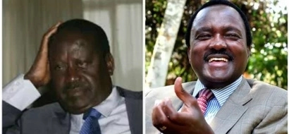 FAKE Kalonzo Musyoka 's resignation letter from NASA cause an online stir