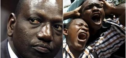 Kenyans poke fun on Ruto after blocking Kenyan on Twitter
