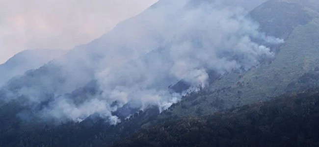 Mt. Apo fire now under control