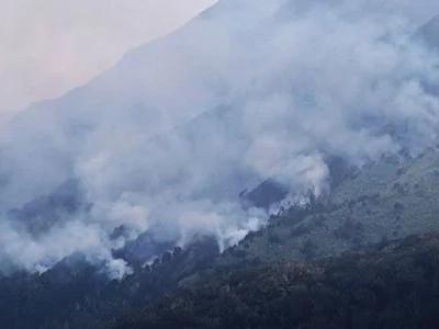 Mt. Apo fire now under control