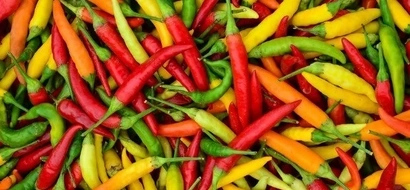 Research proves that regualrly eating chili peppers extends life