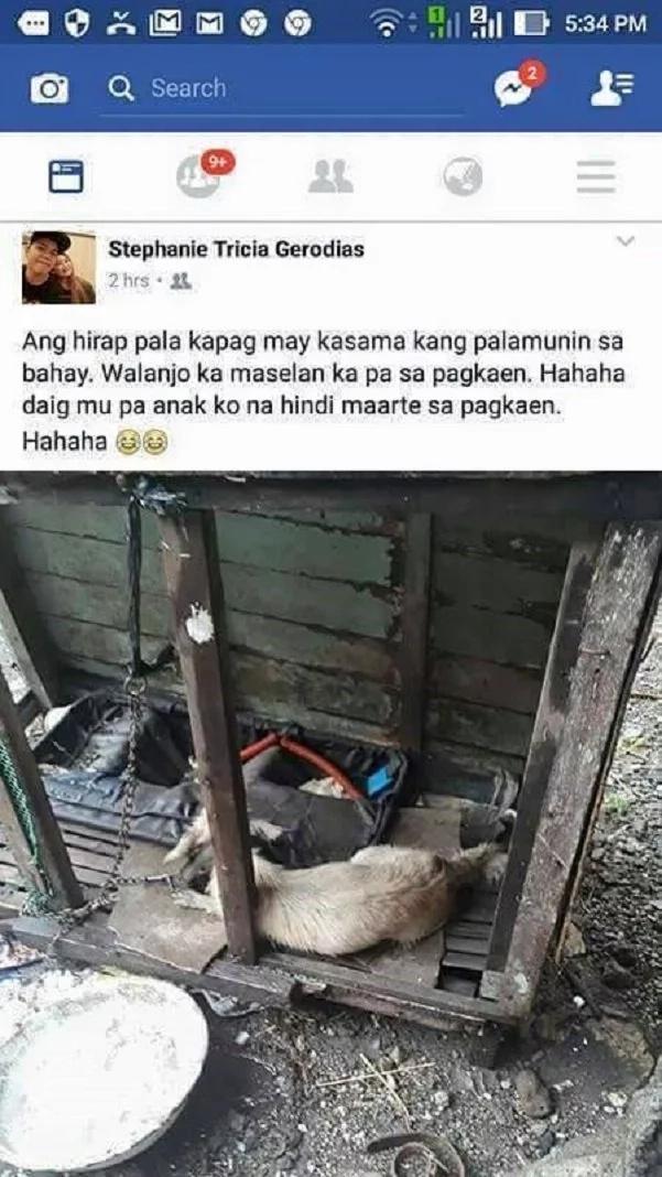 netizen-dog-abuse