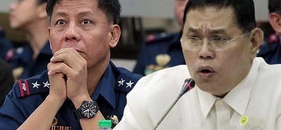 Ombudsman Orders Filing Of Charges Against Purisima, Napenas Over Mamasapano