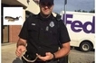 Man calls police to remove snake from his car, says he would rather burn car than touch the reptile