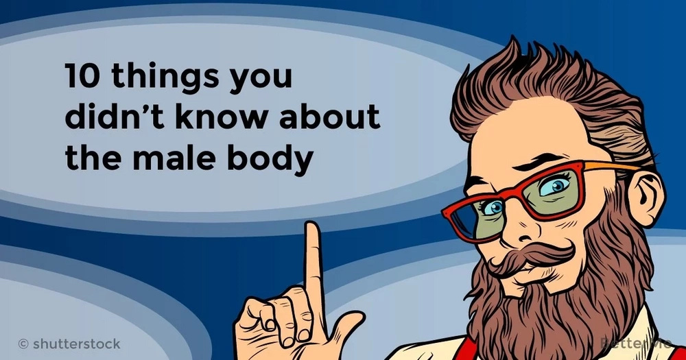 10 things you didn't know about the male body