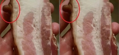 Netizens went crazy over bacon with nipple on it!