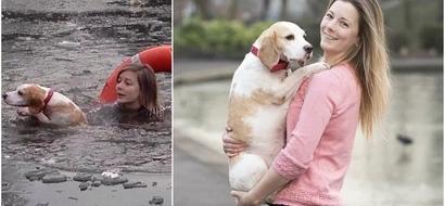 Esta valiente mujer arriesgó su vida al arrojarse a un lago helado para salvar a una beagle