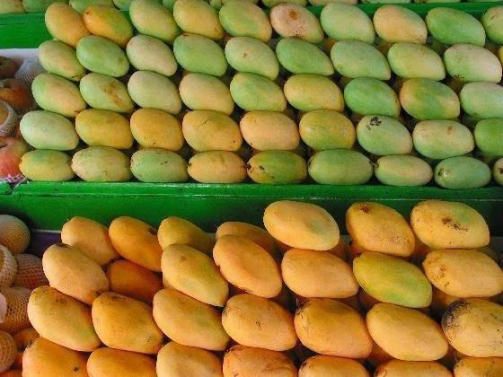 Chinese netizenscall to boycott PH mangoes