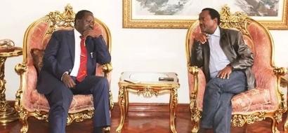 This is why Wetangula is skipping crucial Raila-Kalonzo meeting