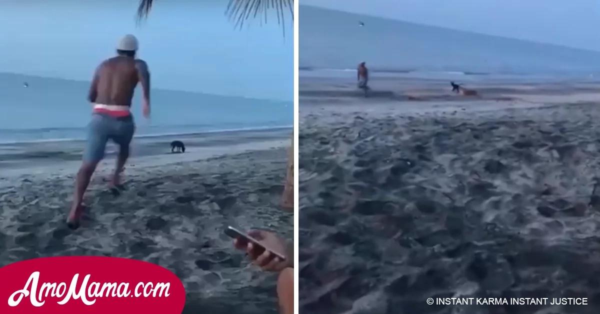 Quería hacerle daño a un perro en la playa pero jamás imaginó que el karma le cobraría eso tan rápido