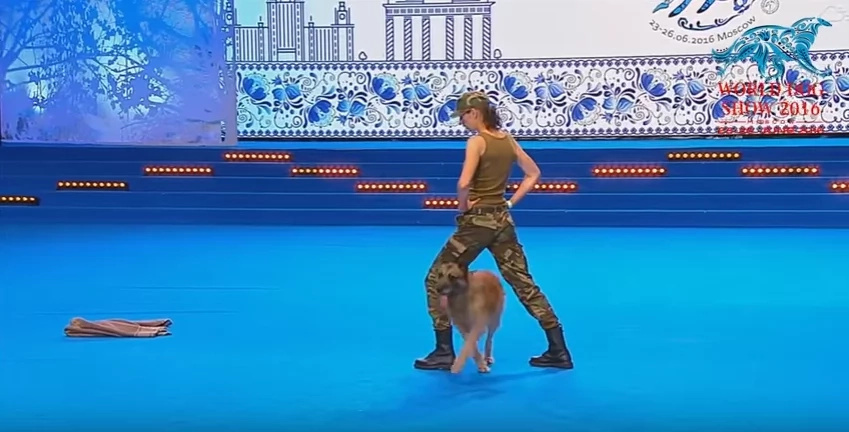Dog performs CPR on owner during dance routine
