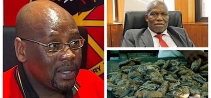 Cosatu president linked to abalone bribe involving Jacob Zuma