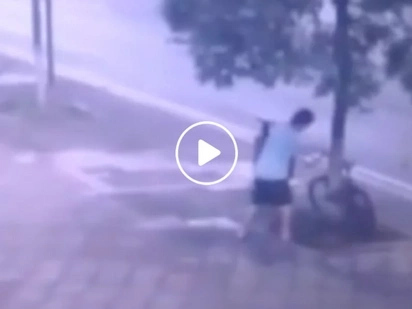 Chinese man chopping tree to steal bike earns outrage of netizens