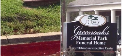 Blood on the street! Nightmarish moment blood and embalming fluid leak out of funeral home