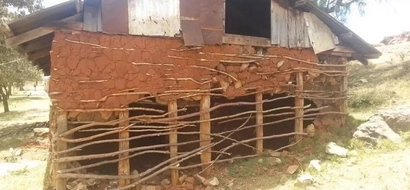 Photos: See deplorable mud houses where apparently Eldoret G.K Prison officers call home