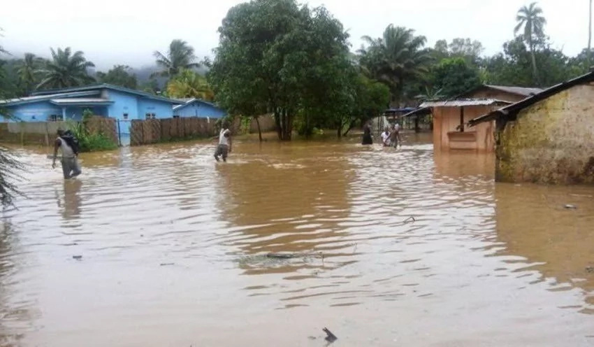 Agony for 40 Nyeri families as floods destroy homes