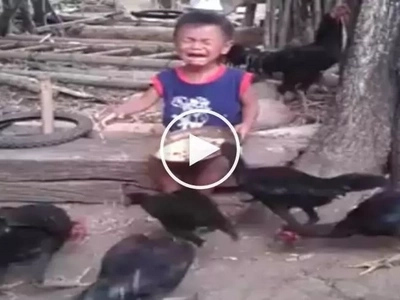 Gutom na gutom! Scary chickens in Baguio attack and steal food from crying toddler