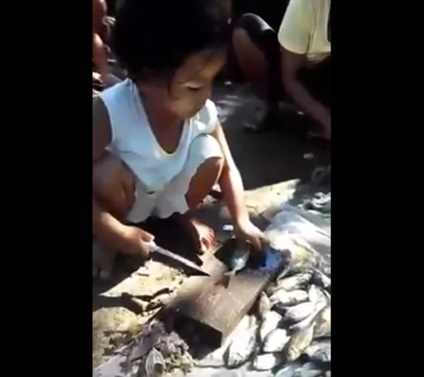 Young girl earns money by scaling fishes using a sharp knife