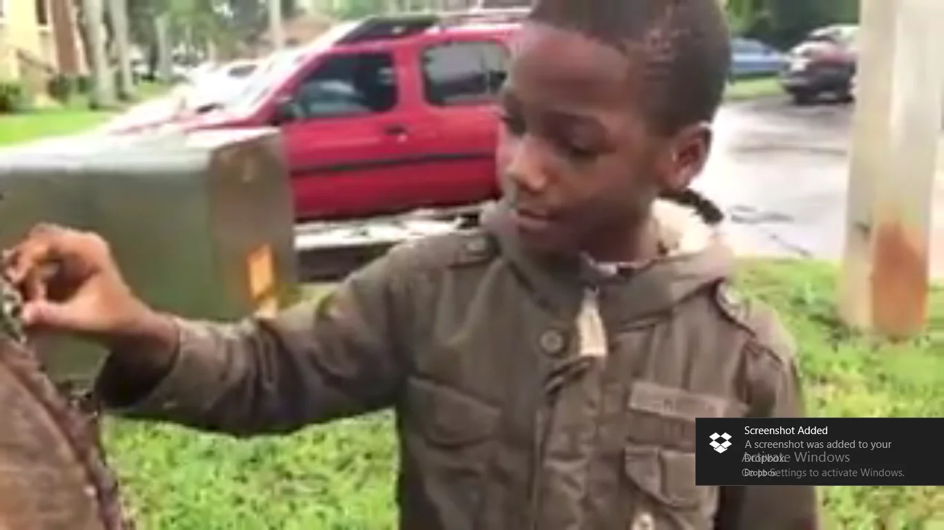 Boy, 8, gives his 19-year-old sister lesson on ZOOLOGY, wows Twitter with his ingenuity (photos)