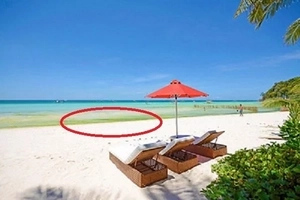 Lumot sa Boracay! Experts say it is because of polluted waters
