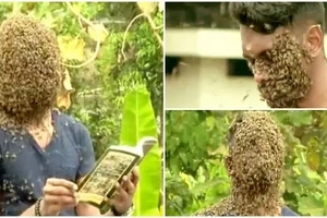 "Brave man, 21, covers his face with 60,000 BEES because they ""comfort him"" (photos, video)"