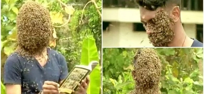 """Brave man, 21, covers his face with 60,000 BEES because they """"comfort him"""" (photos, video)"""