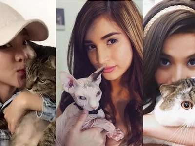 9 Pinoy celebrities you didn't know are insane about cats!