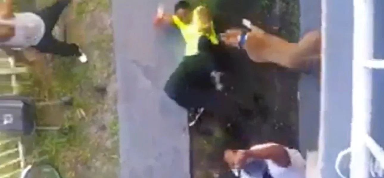 Woman that wanted a fight got beat with a bat and attacked by a pitbull