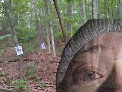 Man finds a mysterious missing people shrine in the middle of the woods