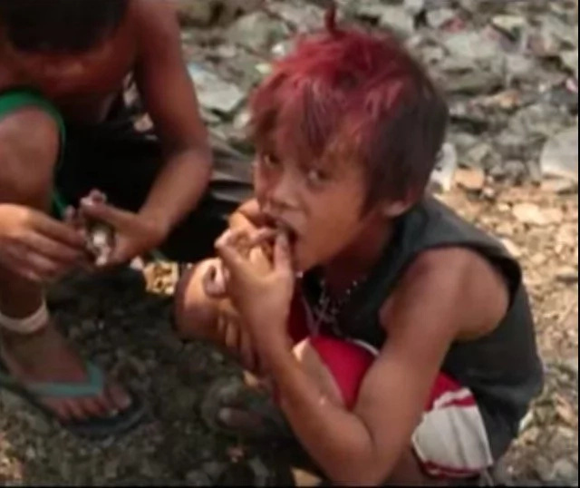 Filipino children from Rizal eat janitor fish; the reason will shock you