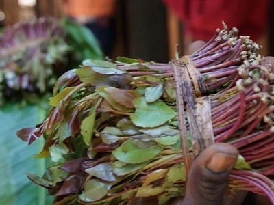 Finally scientists explain what MIRAA does to BEDROOM matters