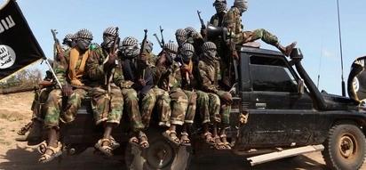 Taharuki Wajir baada ya washukiwa wa al-Shabaab kulipua mnara wa Safaricom, polisi walazimika kuchana mbuga