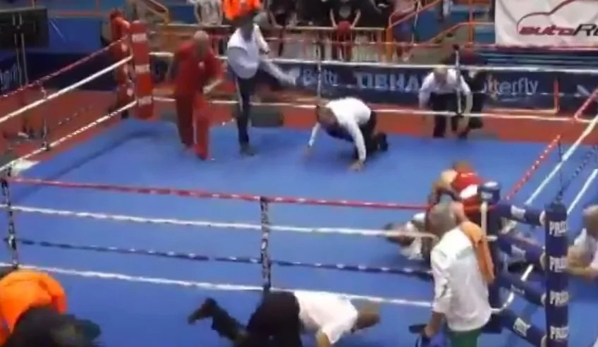 bad-boxer