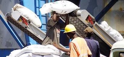 Parliament Rejects Fertiliser Subsidy For Major Cash Crops