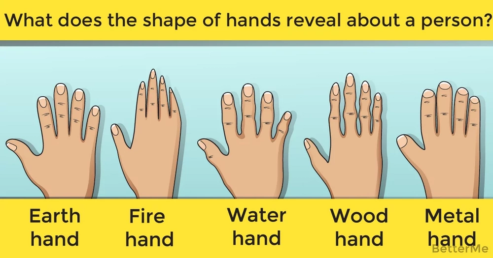 Learn what the shape of hands reveals about a person?