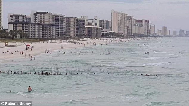 Incredible! 80 Beach-goers human chain to save family from drowning
