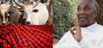 The staggering millions Ole Ntimama's burial will cost
