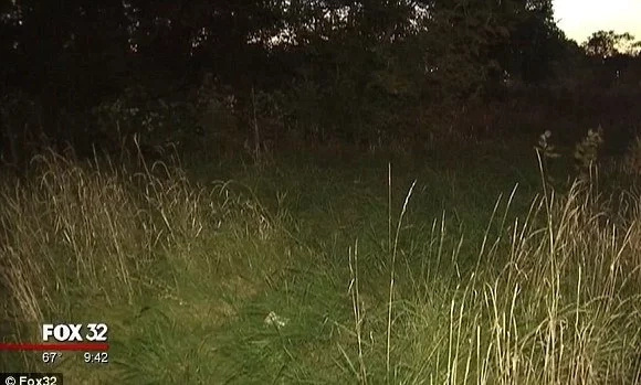 Encontraron a recién nacido tirado en un campo