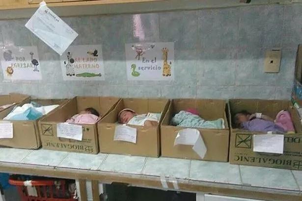 Recién nacidos duermen en cajas de cartón