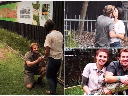 Crocodile handler proposes to girlfriend while feeding huge 4.5-meter crocodile