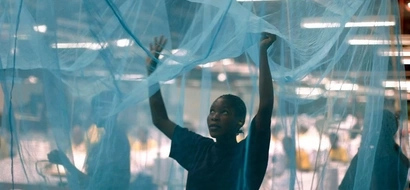 Why Kakamega County Will Prosecute Abuse Of Mosquito Nets