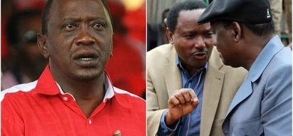 Raila and Kalonzo yet to find lawyers to bail them out of a contempt case filed by Jubilee