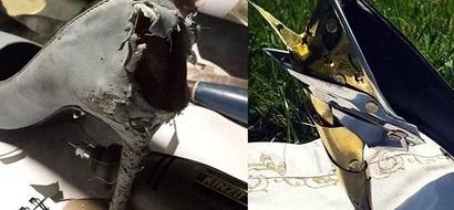 LOOK: Boyfriend transforms girlfriend's chewed-on heels to a work of art