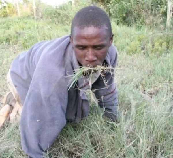 Deadly witch doctor makes yet another Kenyan eat grass for his sins