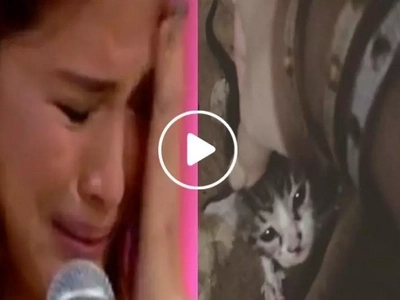 Heart Evangelista cries for justice after rescuing abandoned kittens