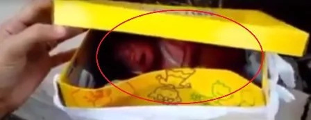 Newborn baby left inside a box to die