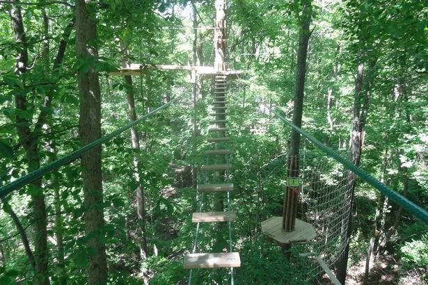 Woman Plunges To Death From Treetop Attraction