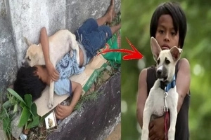 Parents Abandoned This Young Boy! Him and His Dog Only Have Each Other!
